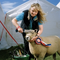 yorkshireshow03.jpg